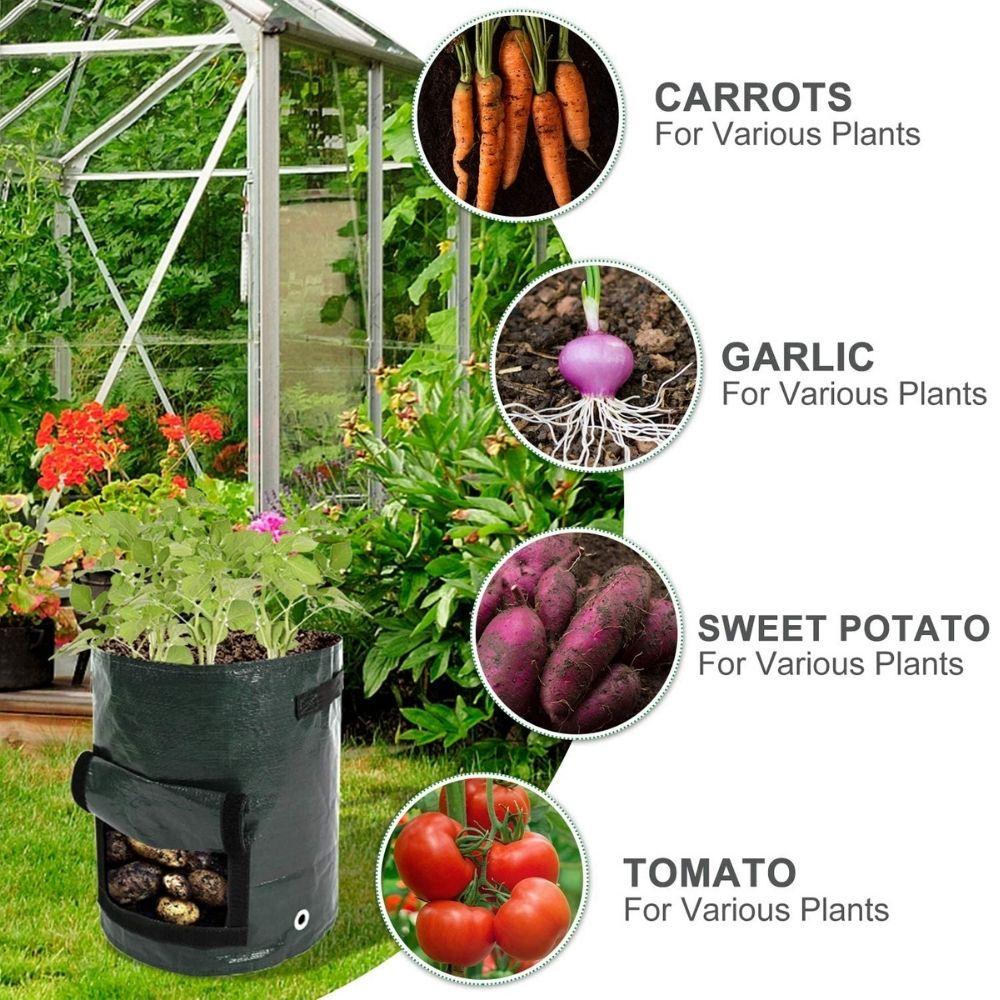 where to buy potato grow bags online